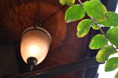 庭の照明。(2017-10-31,共用部,OTHER,1F)
