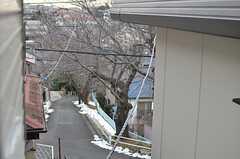 窓からは桜並木がチラリ。(203号室)(2014-02-13,専有部,ROOM,2F)