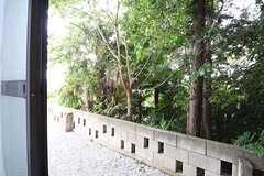 庭の様子。ブロック塀の先は林です。(103号室)(2016-07-08,専有部,ROOM,1F)