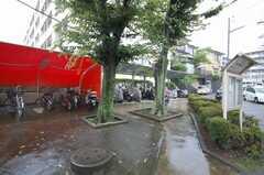 自転車置き場の様子。(2008-08-28,共用部,GARAGE,1F)