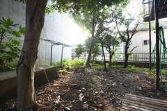 庭の様子。物干し台が設置されています。(2016-09-26,共用部,LIVINGROOM,1F)