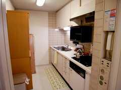 キッチンの様子。(2007-02-16,共用部,KITCHEN,2F)