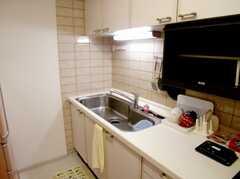 キッチンの様子3。シンクはかなり大きめ。(2007-02-16,共用部,KITCHEN,2F)