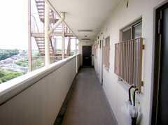 3Fの廊下部分。ノーマルなマンション。(2007-05-31,共用部,OTHER,1F)