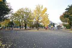 シェアハウス近くの公園の様子。(2015-11-24,共用部,ENVIRONMENT,1F)