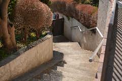 上から階段を見るとこんな感じ。(2017-02-15,周辺環境,ENTRANCE,1F)