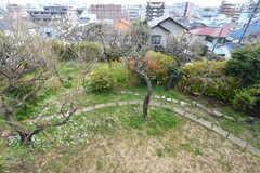 ベランダから見た庭の様子。(2017-03-22,共用部,OTHER,2F)