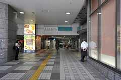 各線・上大岡駅の様子。(2011-09-14,共用部,ENVIRONMENT,1F)