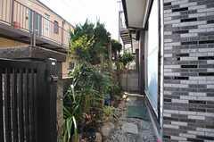 庭の様子3。(2013-03-04,共用部,OTHER,1F)