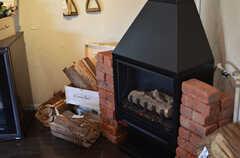 暖炉型ガス式ヒーターの様子。  (2012-02-10,共用部,OTHER,1F)