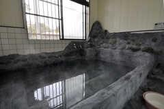 岩風呂は自動湯沸かし器付きです。(2012-02-10,共用部,BATH,1F)