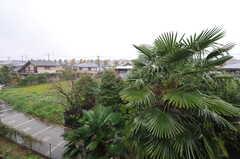 廊下から見た景色。(2012-01-15,共用部,OTHER,2F)