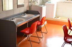 洗面室の様子2。(2012-02-10,共用部,OTHER,2F)