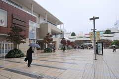 東急田園都市線・たまプラーザ駅前の様子。(2011-11-11,共用部,ENVIRONMENT,1F)