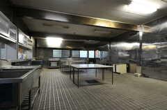 設備などが整う前のキッチンの様子。(2011-11-11,共用部,KITCHEN,1F)