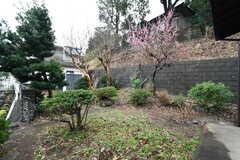 庭の様子。(2020-02-26,共用部,OTHER,1F)
