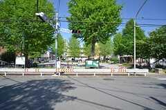 近所の公園。(2015-04-27,共用部,ENVIRONMENT,1F)