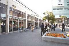 JR・桜木町駅に隣接した施設「CIAL 桜木町」の様子。(2016-03-23,共用部,ENVIRONMENT,1F)