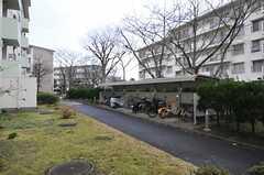 駐輪場の様子。(4002号室)(2014-03-17,共用部,GARAGE,1F)