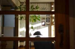 ドアガラス越しのリビング。(2012-12-25,共用部,LIVINGROOM,1F)