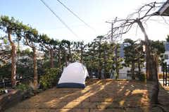 庭の様子。テントは管理人室です。(2012-12-25,共用部,OTHER,1F)