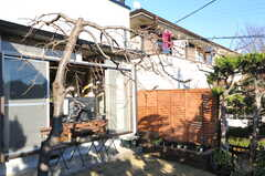 桜の木も植えられています。(2012-12-25,共用部,OTHER,1F)