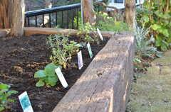 花壇にはハーブ類が植えられています。(2012-12-25,共用部,OTHER,1F)
