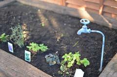 蛇口から水はでません。花壇は自由に使えるそう。(2012-12-25,共用部,OTHER,1F)
