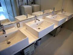 洗面台の様子。(2014-05-29,共用部,OTHER,1F)