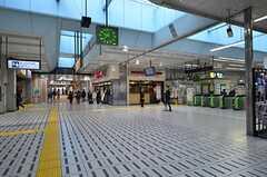 JR東海道線・保土ヶ谷駅構内の様子。(2016-04-21,共用部,ENVIRONMENT,1F)