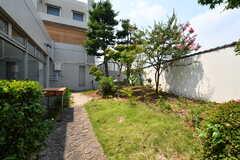 庭の様子2。(2018-08-03,共用部,OTHER,1F)