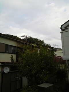 窓から見た風景(203号室)。 ※事業者様提供素材(2014-11-09,専有部,ROOM,1F)
