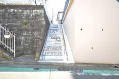 シェアハウスへ向かう階段の様子。ステンシルが施されています。(2015-12-01,共用部,OTHER,1F)