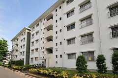 団地の様子。5階の1室がシェアハウスです。(2012-06-07,共用部,OUTLOOK,1F)