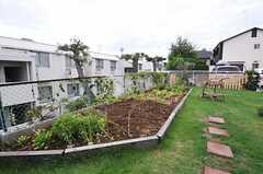 菜園もあり、ハーブや野菜が育っています。撮影時は台風直後だったため、バジルは少し傾いています。(2013-09-16,共用部,OTHER,1F)