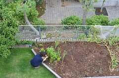 庭や菜園を上から見られます。(307号室)(2013-09-16,専有部,ROOM,3F)