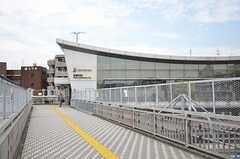 相模線・西横浜駅の様子。(2015-08-19,共用部,ENVIRONMENT,1F)