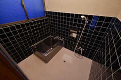 バスルームの様子。(2017-05-17,共用部,BATH,1F)