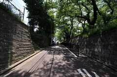 シェアハウスの近くにある緑道の様子。(2011-05-31,共用部,ENVIRONMENT,1F)