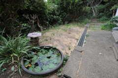睡蓮鉢があるので、金魚を飼えるかも。(2011-10-20,共用部,OTHER,1F)