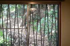 専有部の窓。(101号室)(2011-10-20,専有部,ROOM,1F)
