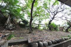 庭の様子。(103号室)(2011-10-20,専有部,ROOM,1F)