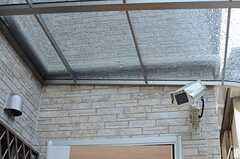 ドアの上部には防犯カメラが設置されています。(2013-02-15,周辺環境,ENTRANCE,1F)