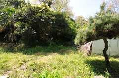 庭の様子。(102号室)(2012-04-24,専有部,ROOM,1F)