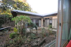 リビングから見た中庭の様子。(2013-11-26,共用部,OTHER,1F)