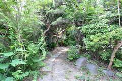 シェアハウスのアプローチ。植物に囲まれています。(2021-06-11,周辺環境,ENTRANCE,1F)