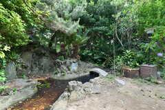 庭には小さな池があります。(2021-06-11,共用部,OTHER,1F)