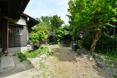 庭の様子2。(2021-06-11,共用部,OTHER,1F)