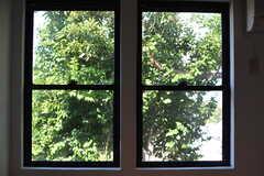 窓の先はたっぷりの緑。(102号室)(2020-06-26,専有部,ROOM,1F)
