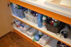 洗面台の下は専有部ごとに使えるスペースが決まっています。(2016-05-26,共用部,BATH,1F)